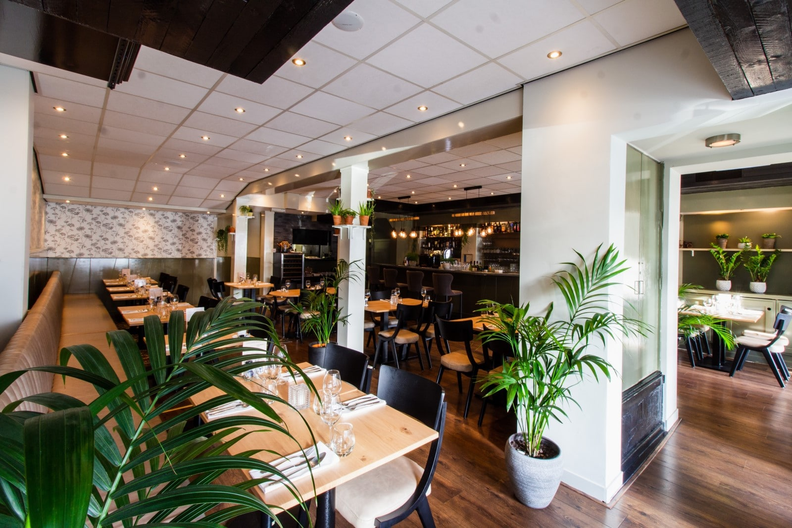 lush greenery in a modernly decorated restaurant and bar space